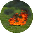 DRV-Feuer-Brandmittelspürhunde