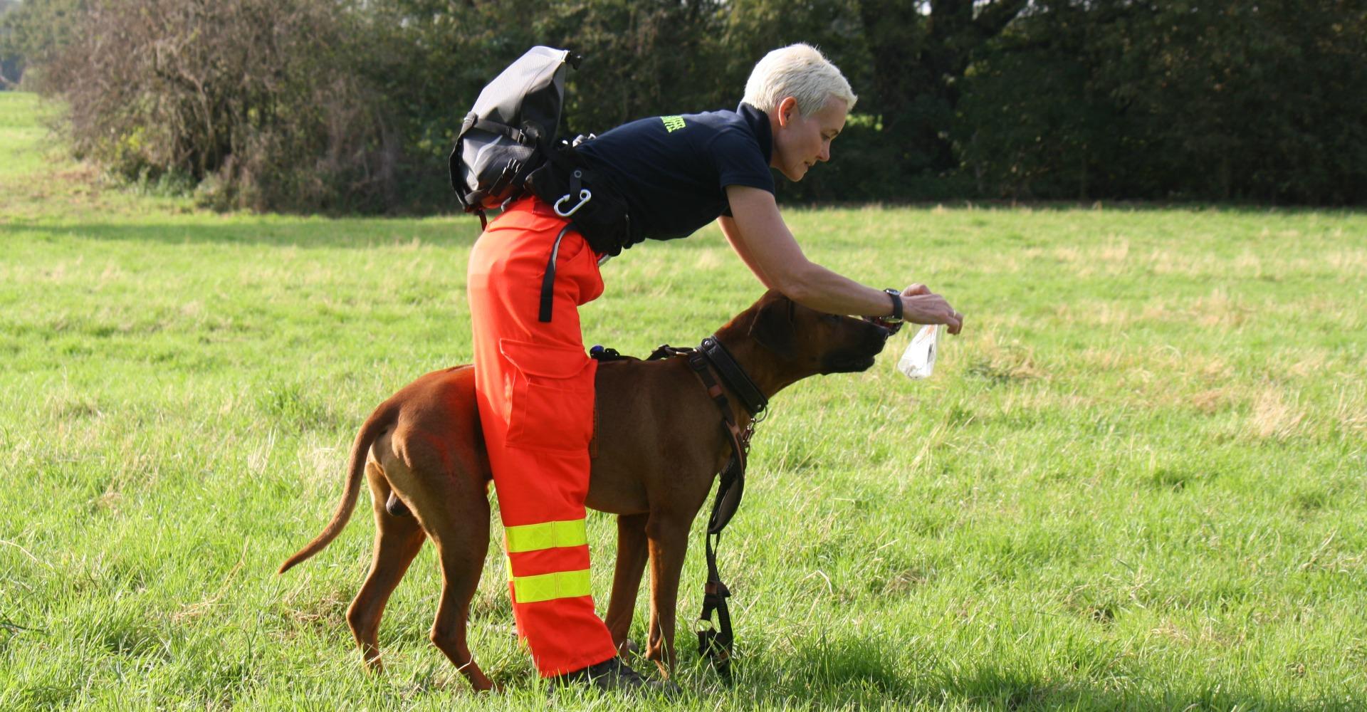 Rettungshund-Sportlich-Senco-Dogs