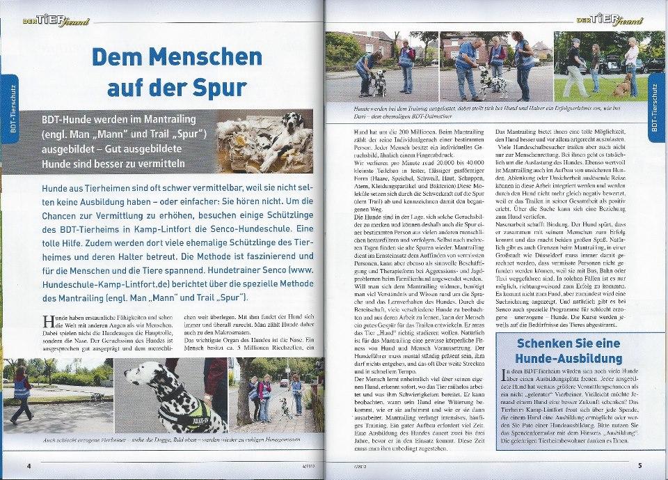 PSH -Tierheim