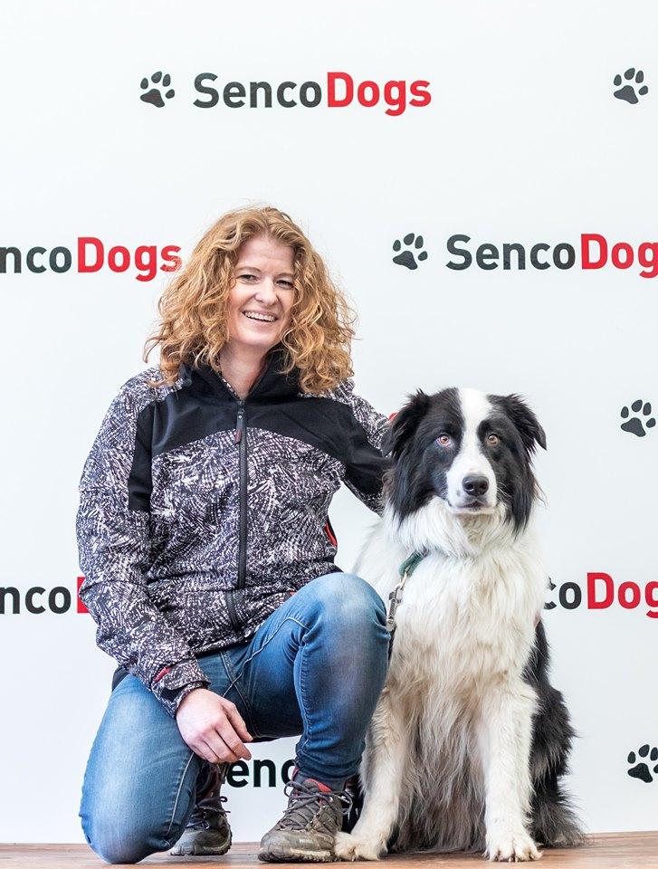 senco-dogs-team-des-monats
